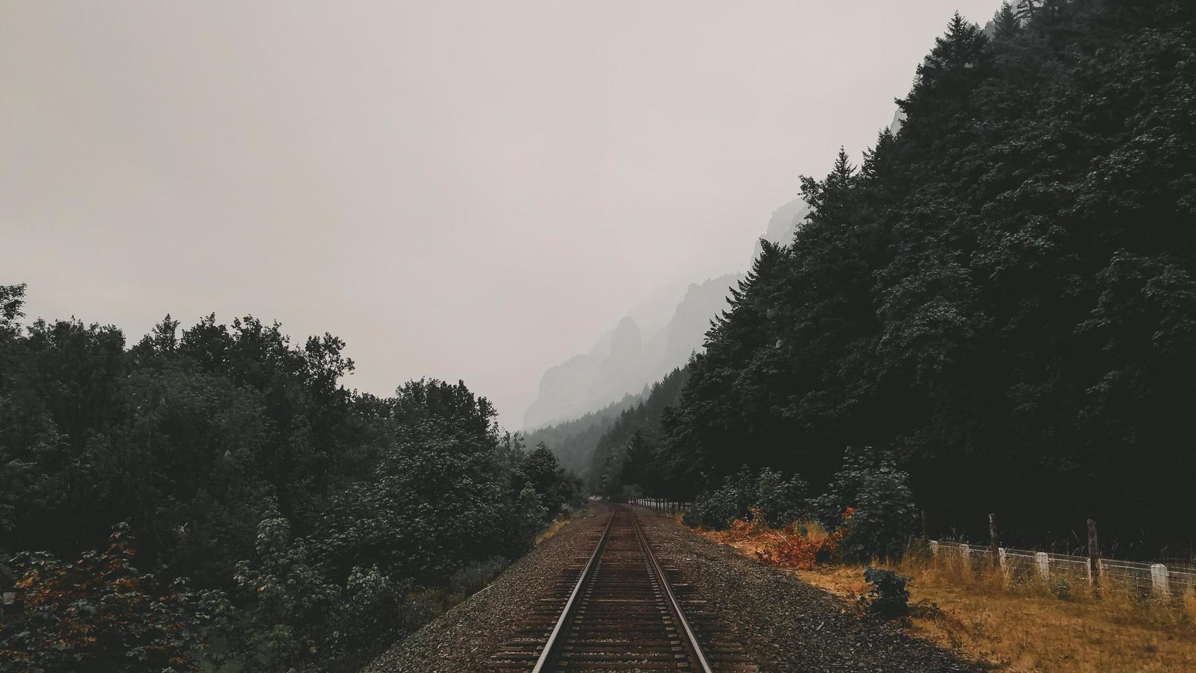 Rail road tracks with mountains in distance photo