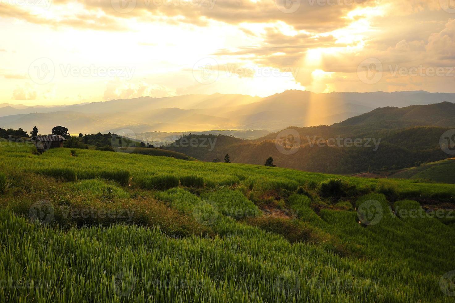 paisaje de campos de arroz en terrazas en la montaña foto