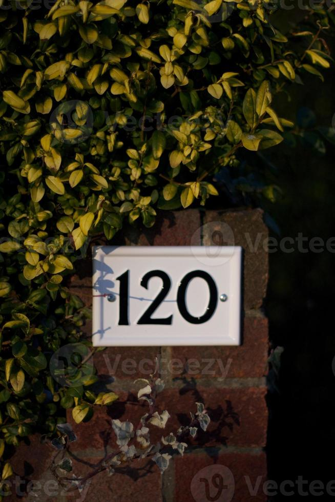 número 120 foto