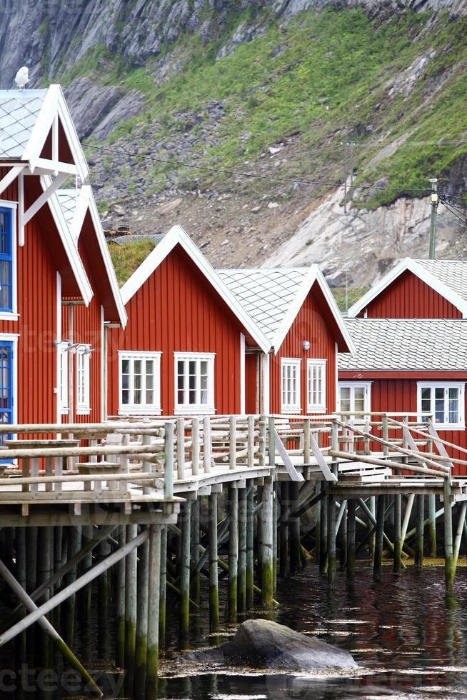 Traditional houses in Lofoten, Norway photo