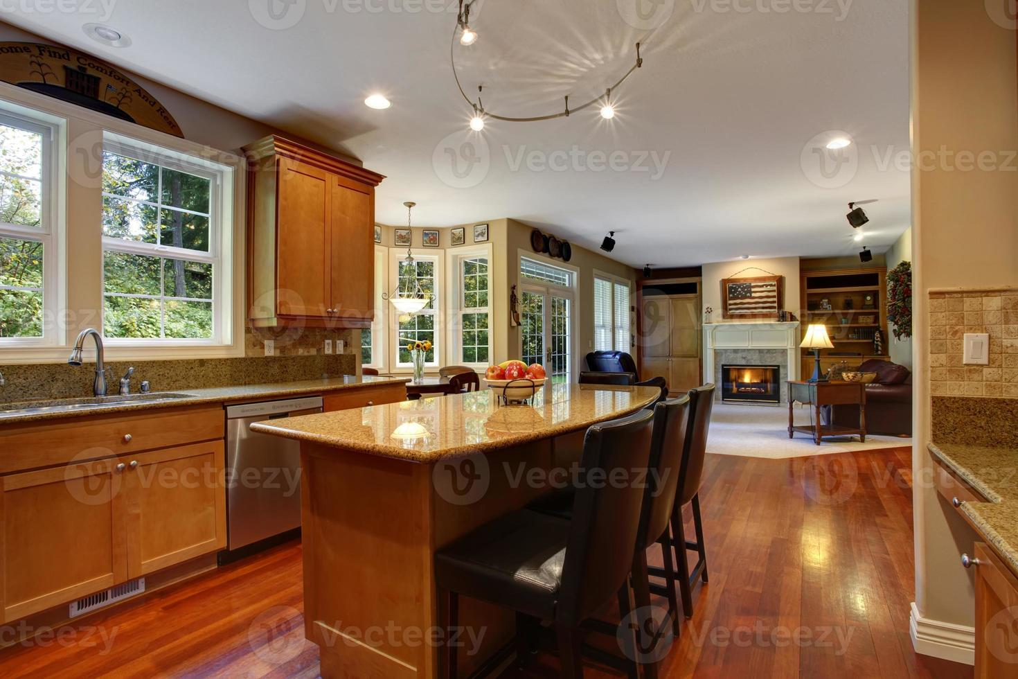 interior de la casa. elegante interior de la sala de cocina foto