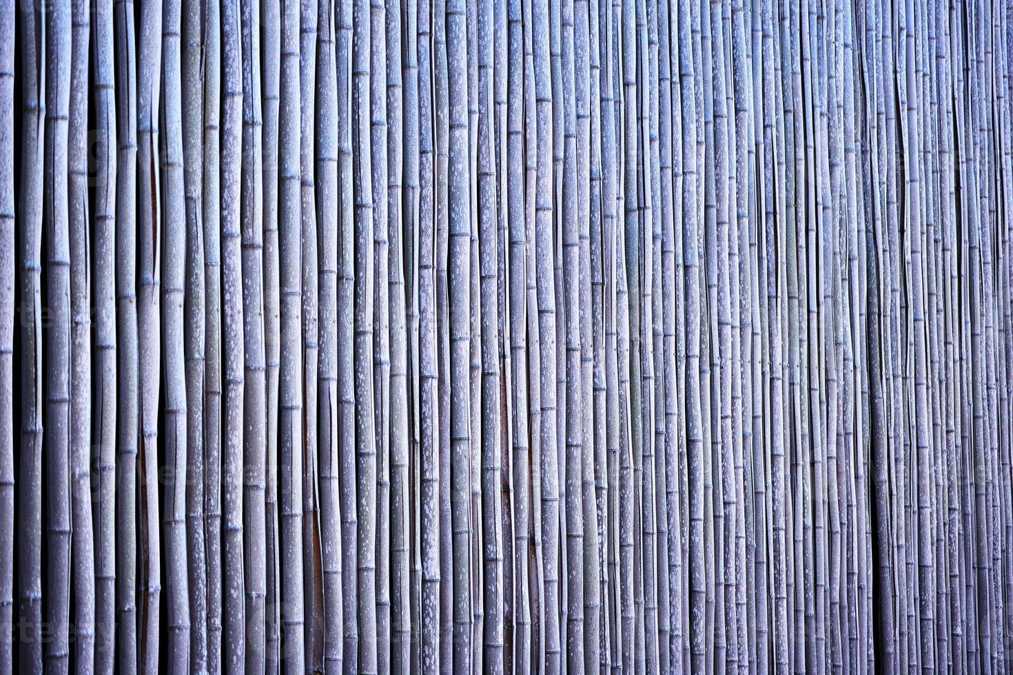 valla de bambú foto