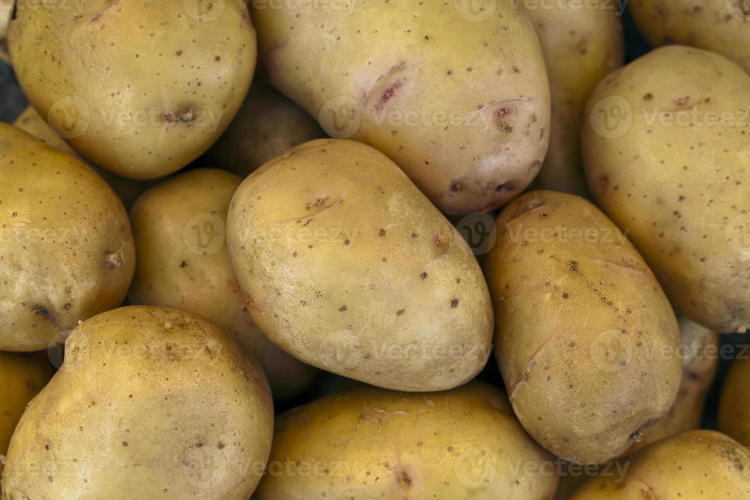 Yellow potatoes photo