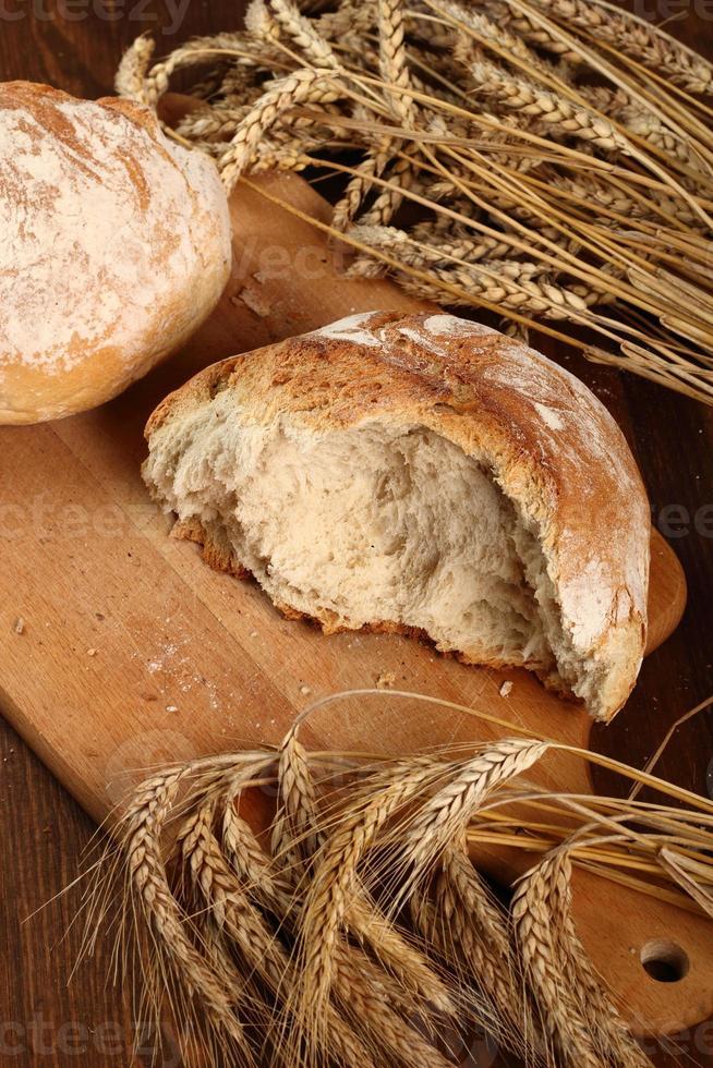 espigas de pan y trigo foto