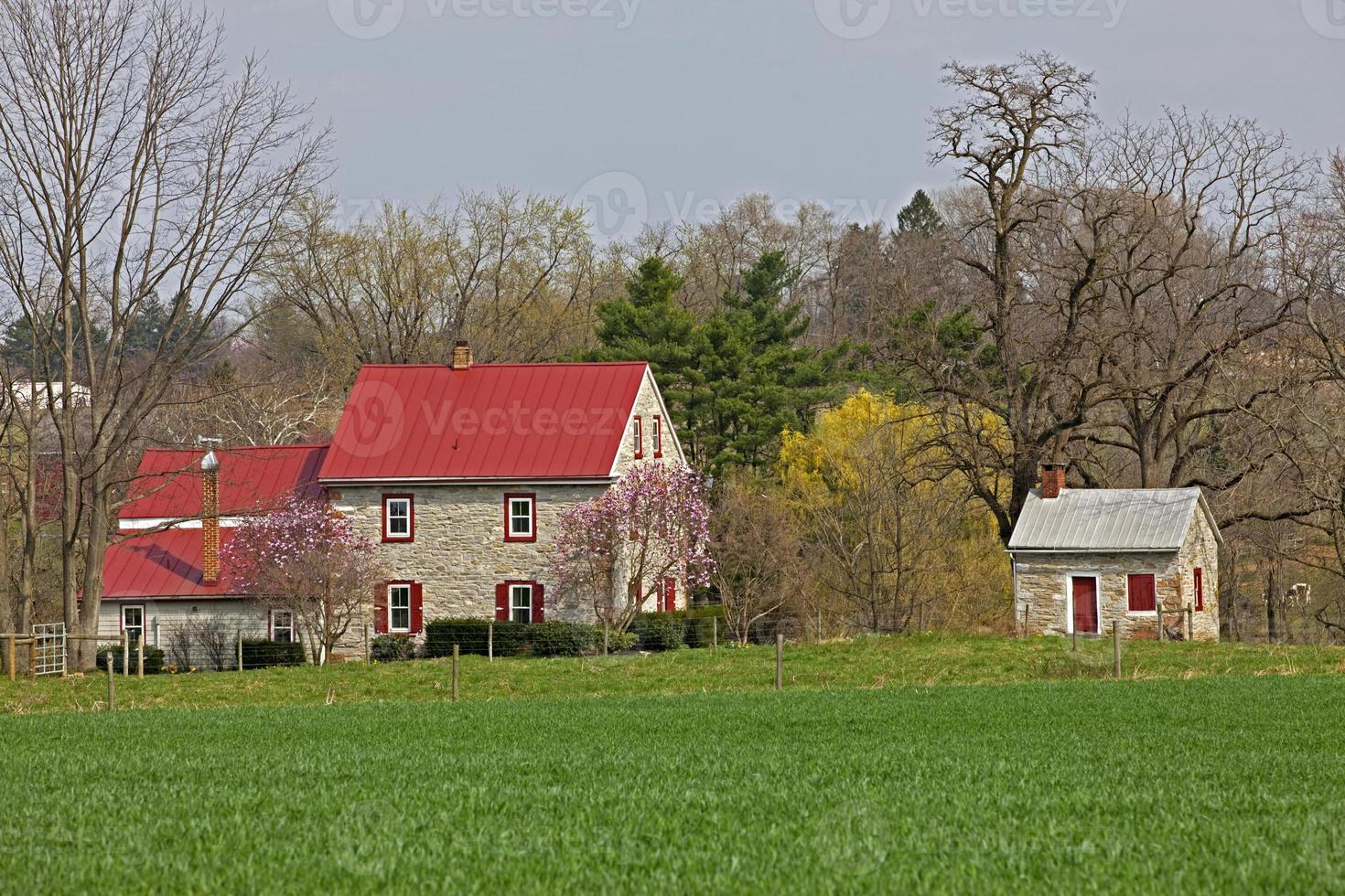 masía colonial de piedra caliza y cocina de verano primavera foto