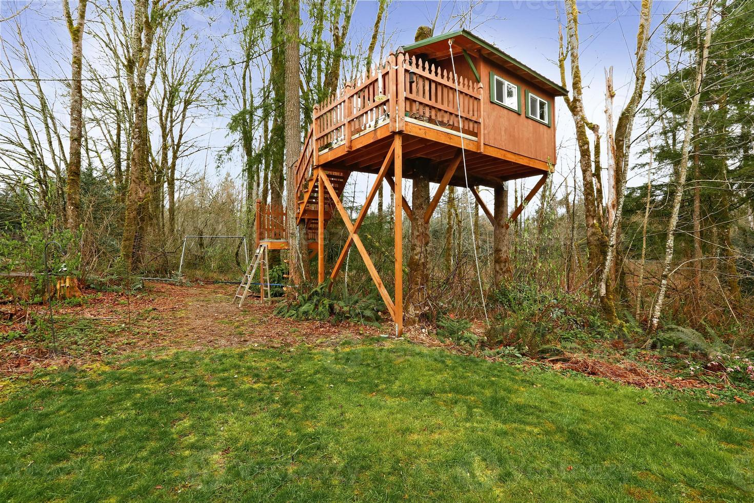 Tree house with walkout deck and stairs photo
