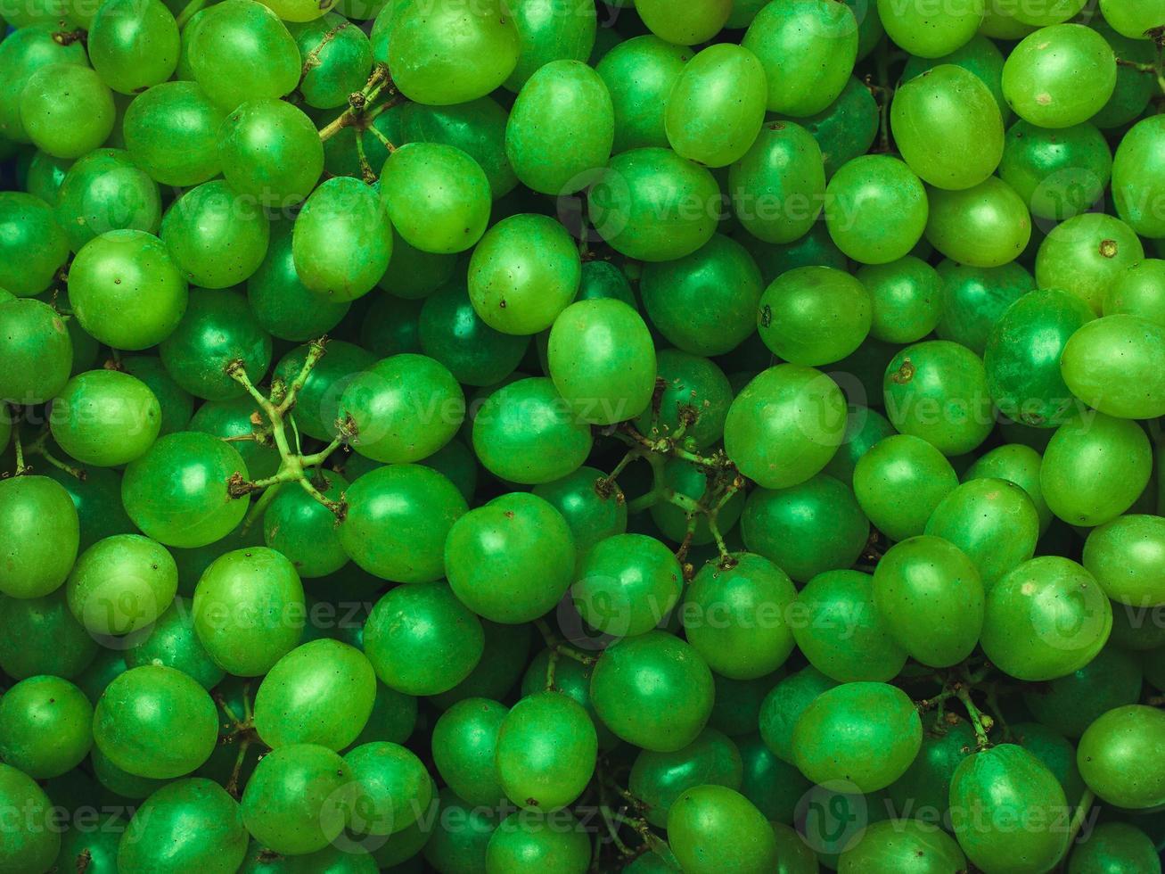 Large green grapes. photo