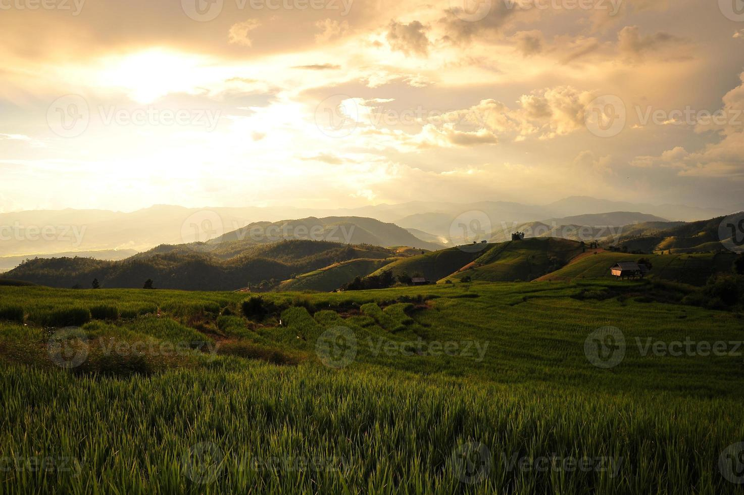 Rice Terraced Fields Landscape on the Mountain photo