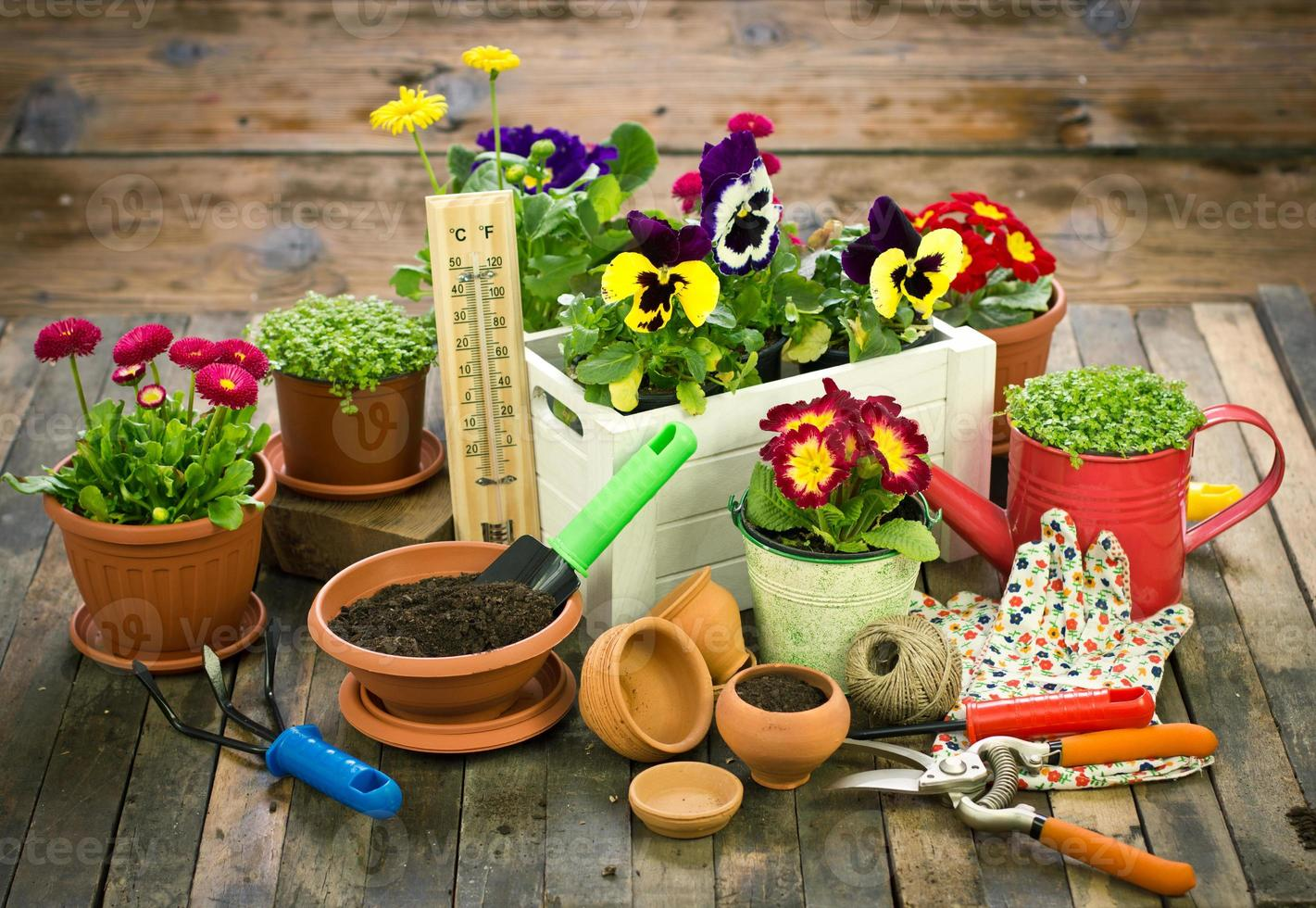Gardening tools and flowers photo
