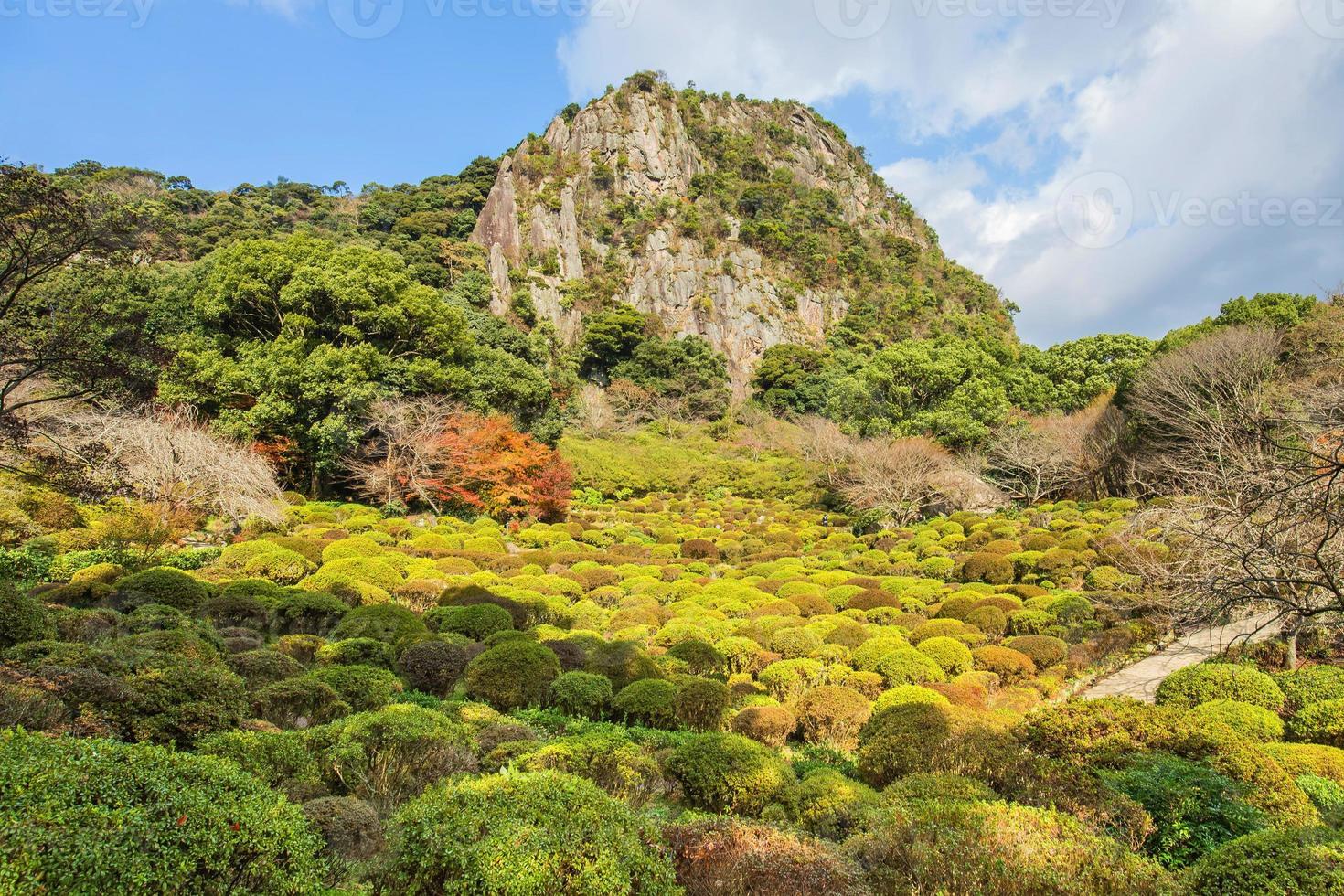 Jardín Mifuneyama en Saga North Kyushu, Japón foto