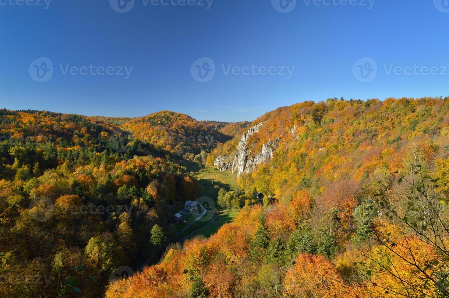 otoño en el parque nacional de ojcow. foto