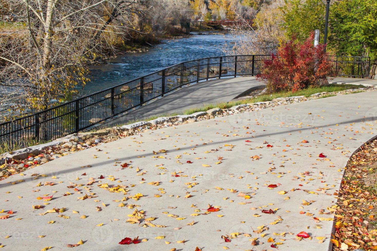 hojas de otoño en el sendero del río animas foto