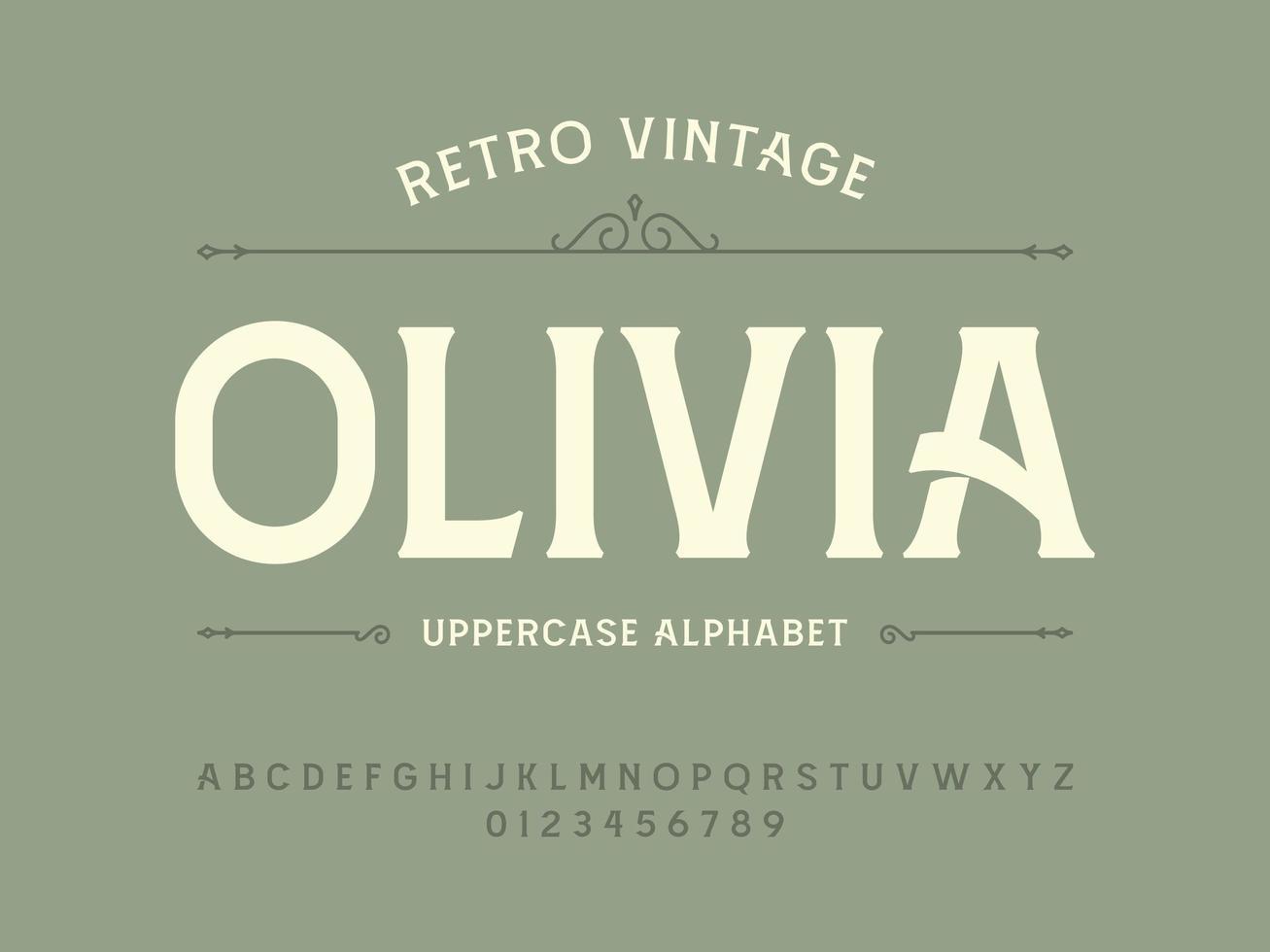 Vintage Display Decorative Uppercase Serif Font vector