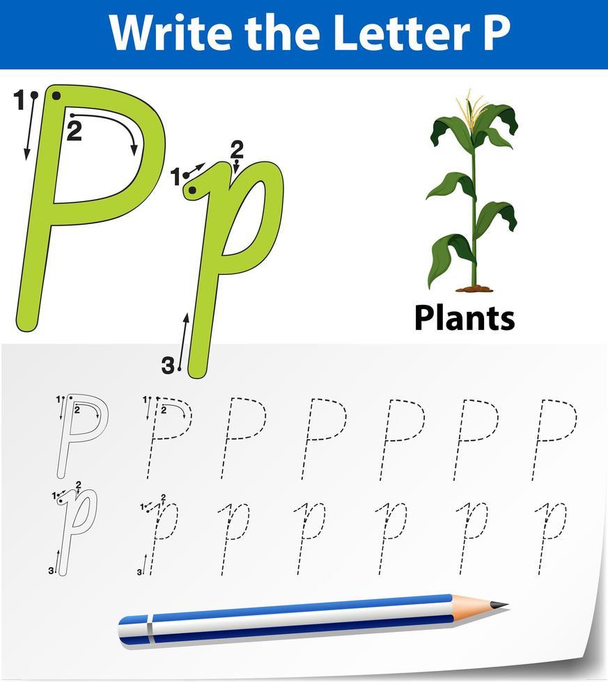 Letra p trazando la hoja de trabajo del alfabeto con planta vector