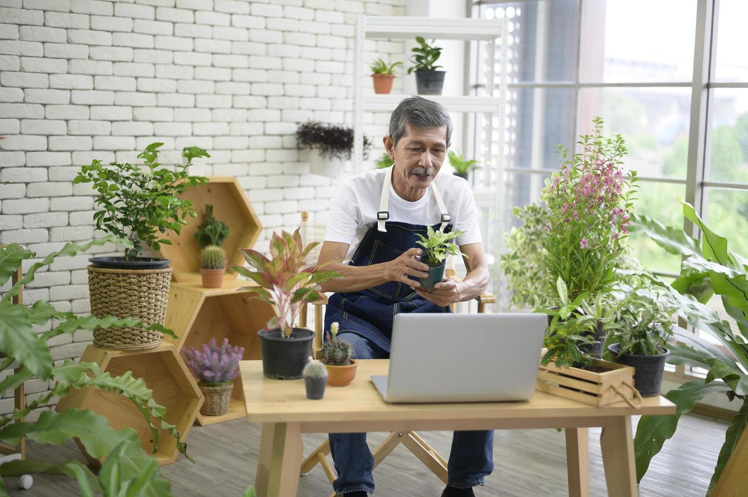 Asian man working with house plants photo