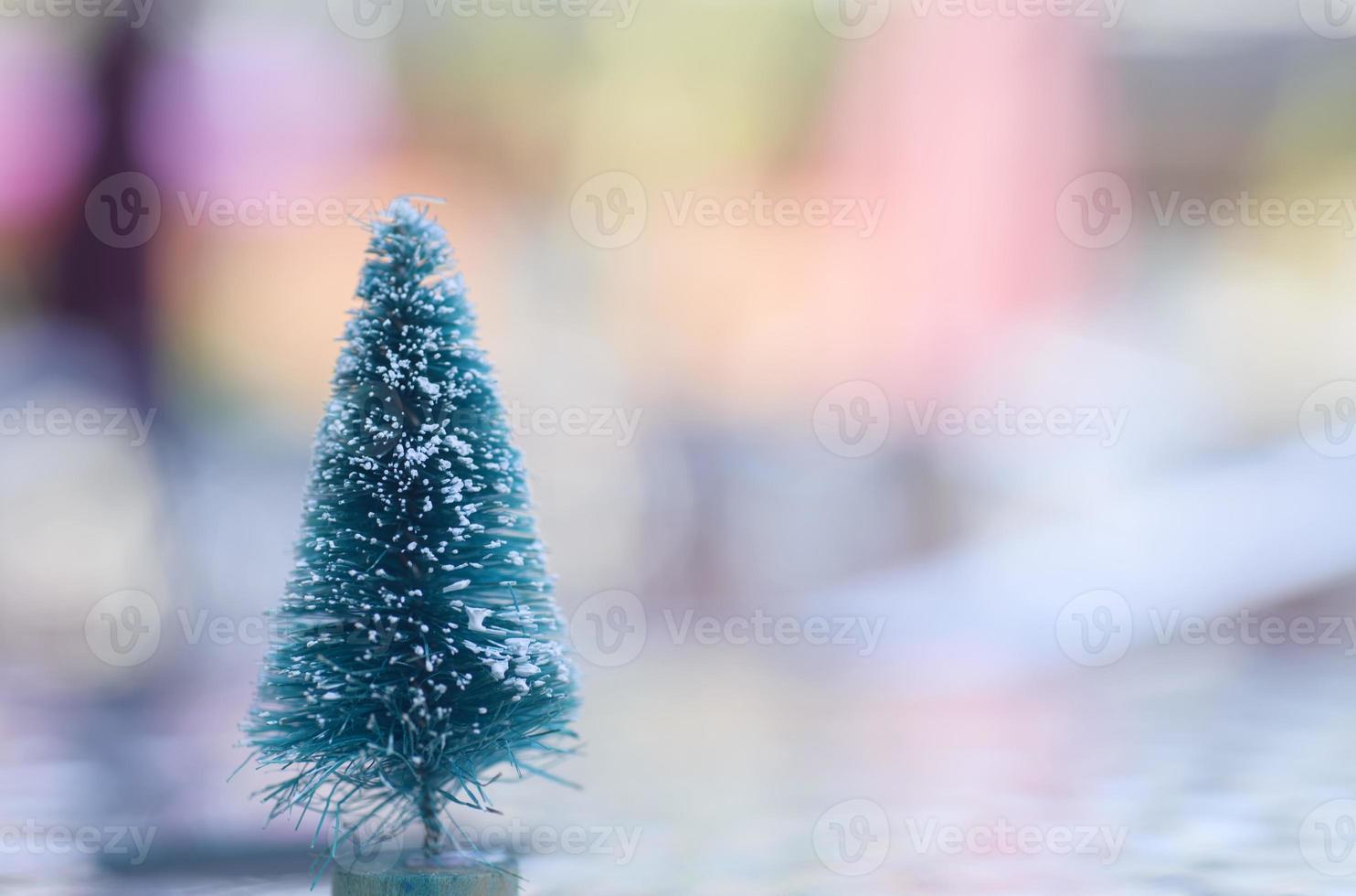 Bare Christmas Tree photo