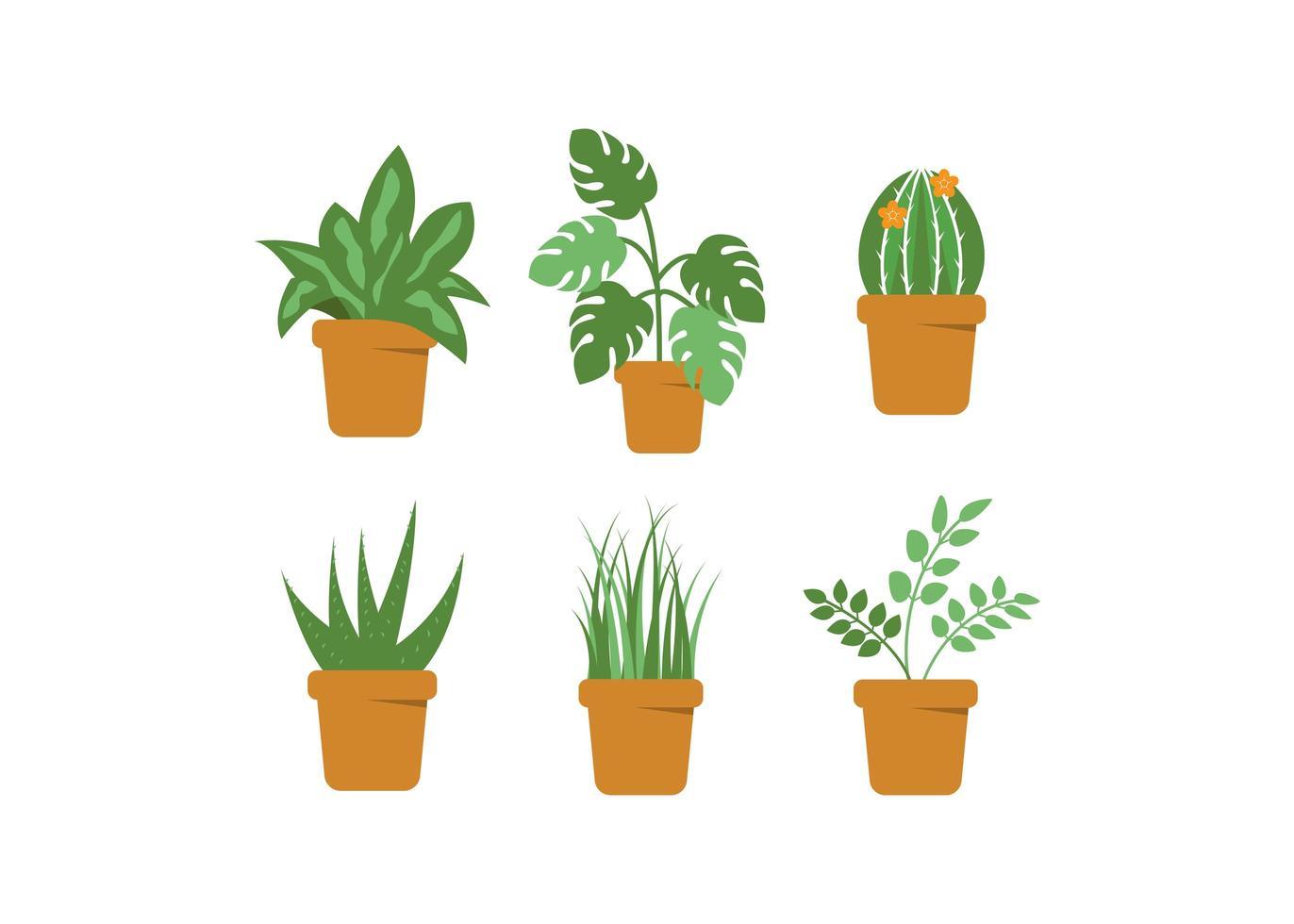 Green plant pot set vector