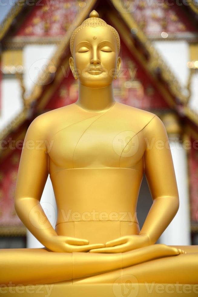 Buddha statue in front of temple, Thailand photo
