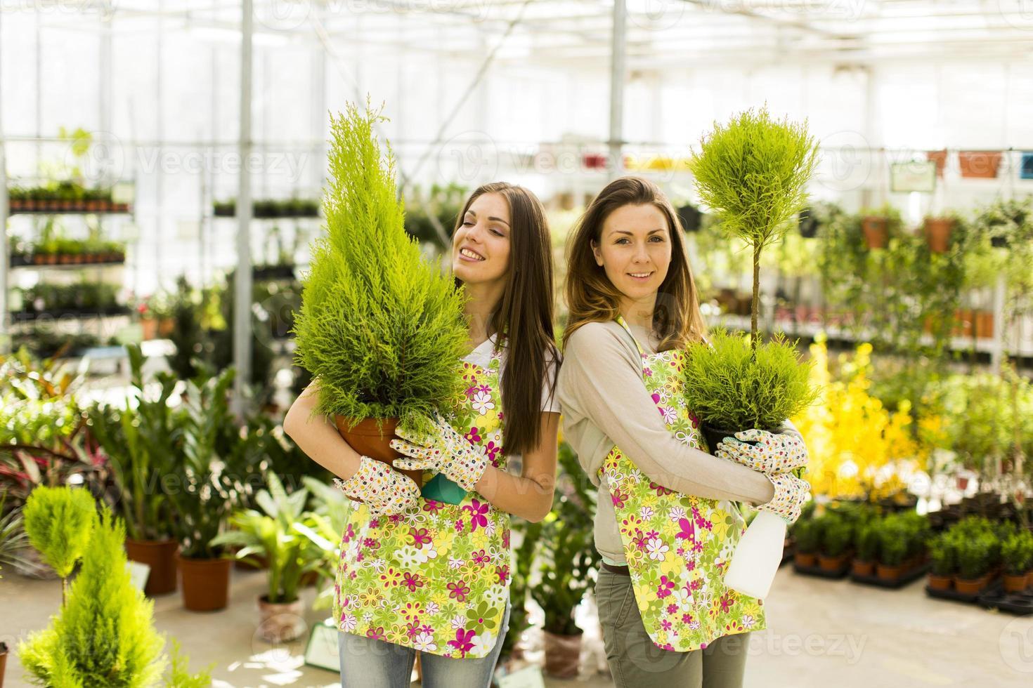 Young women in flower garden photo