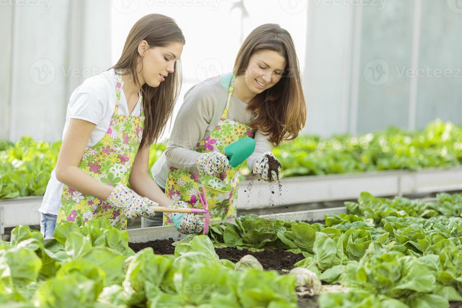 Young women in the garden photo