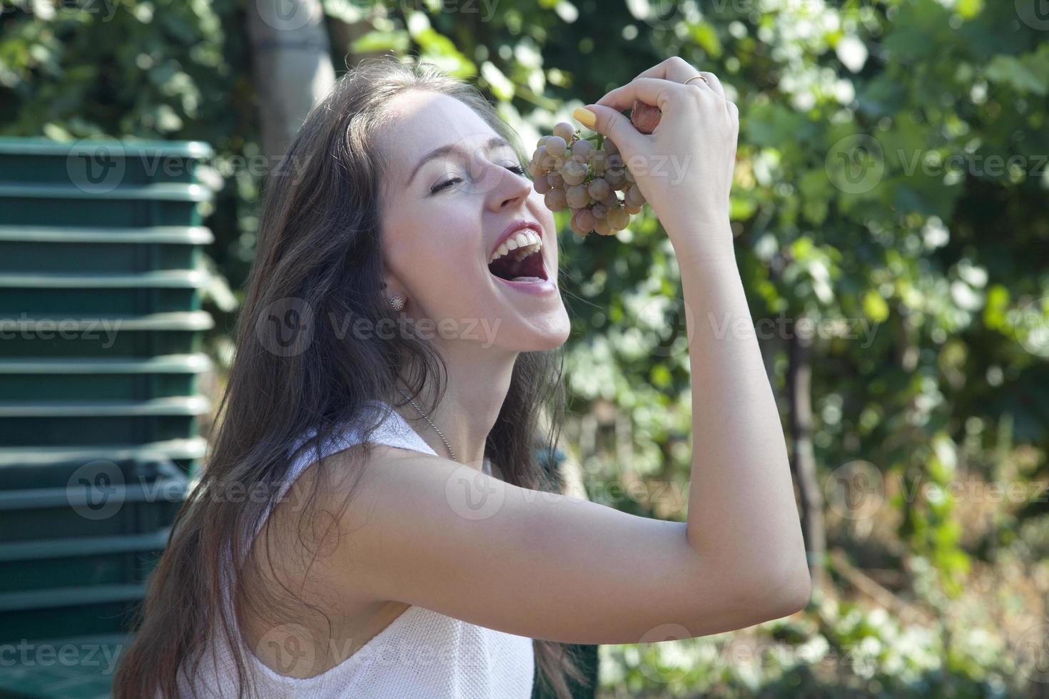Girl eating grapes in vineyard. photo