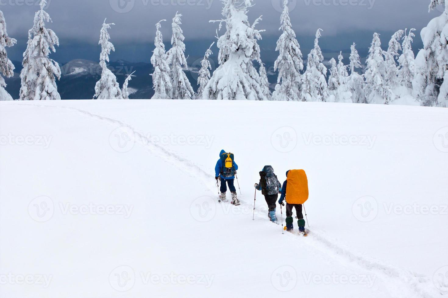 team of hikers in winter mountains photo