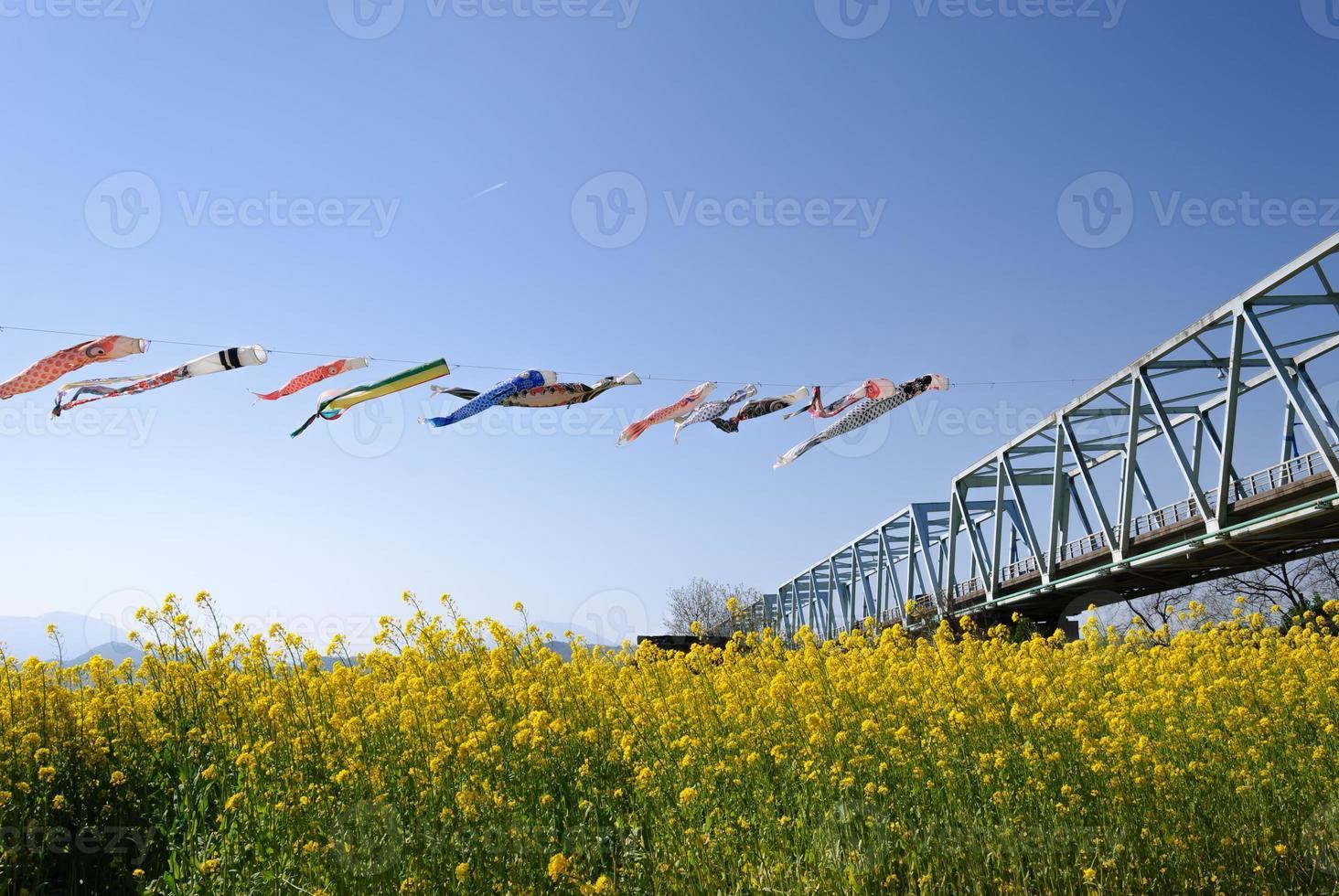 Serpentinas de carpa en el cielo azul foto