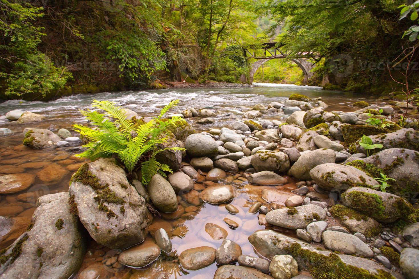 rio de montanha com pedras e céu foto