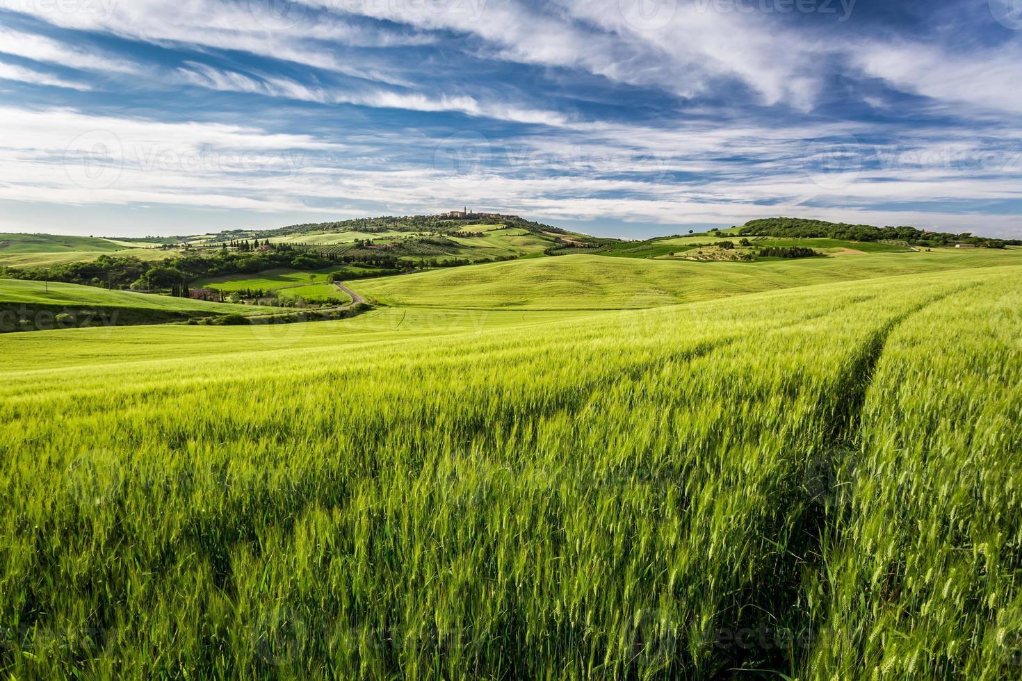 campo verde y cielo azul en toscana foto