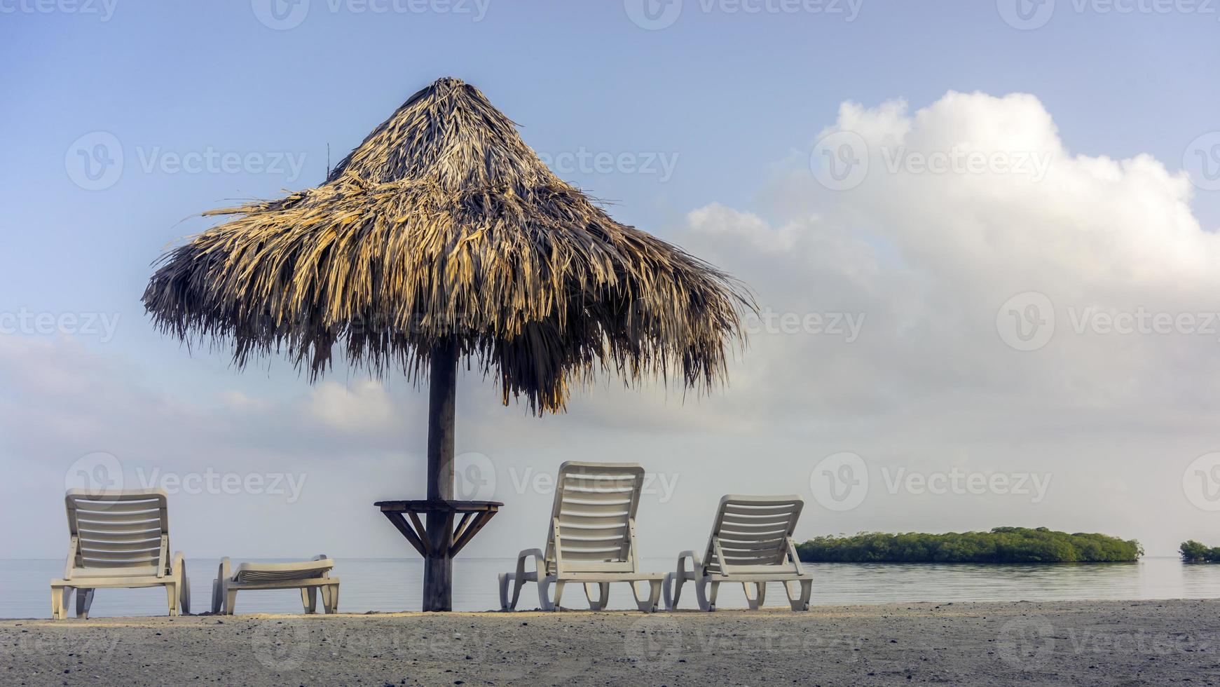 Beach umbrella photo