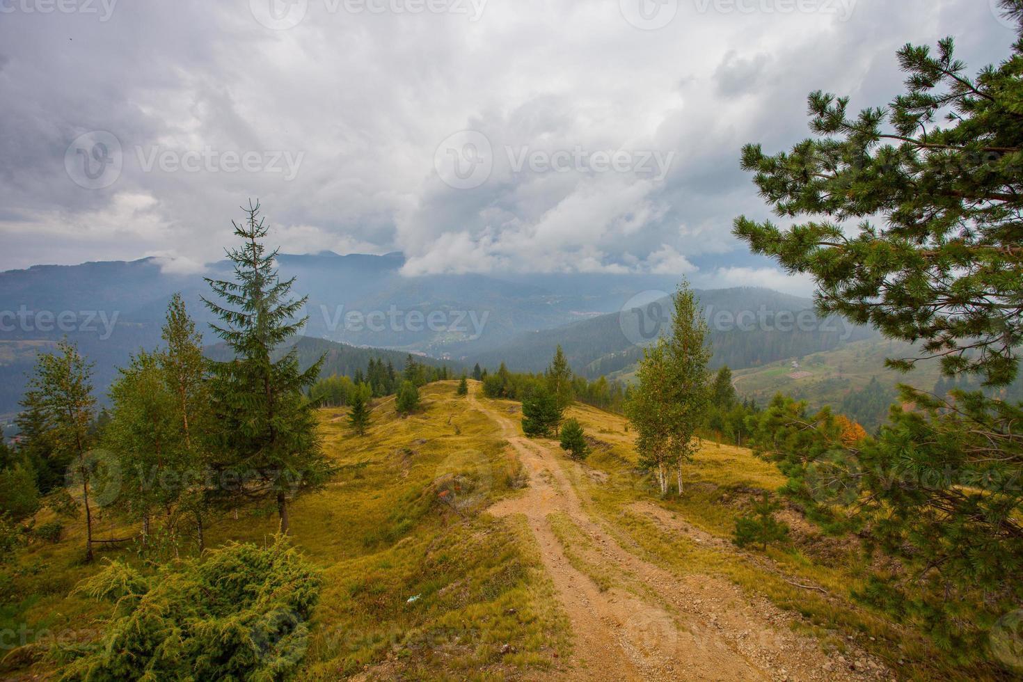camino a las montañas con cielo azul en los cárpatos foto