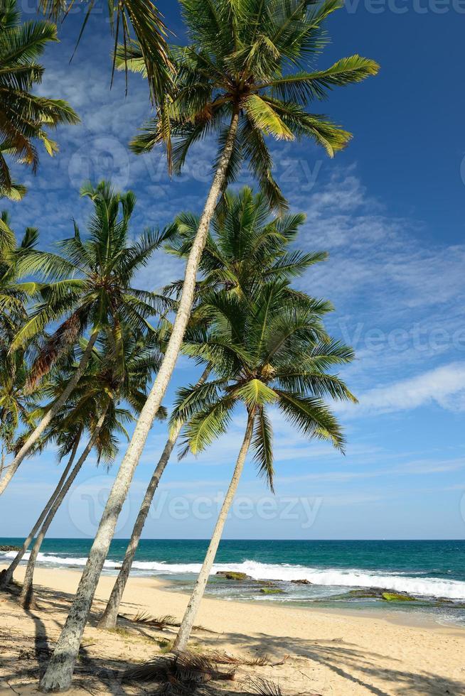 playa tangalle en sri lanka foto