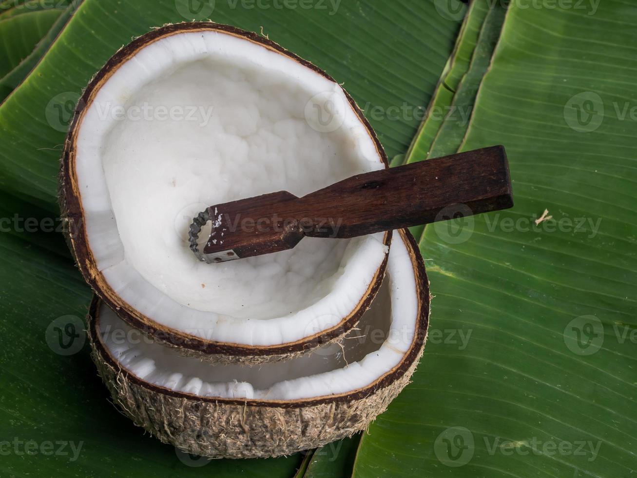 Coconut shell photo