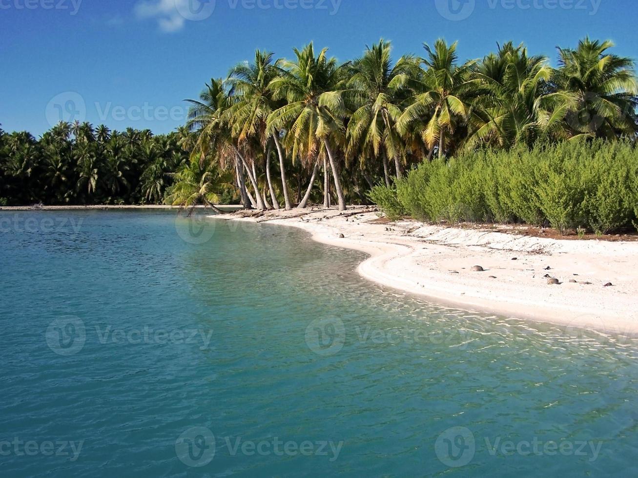 polynesian photo
