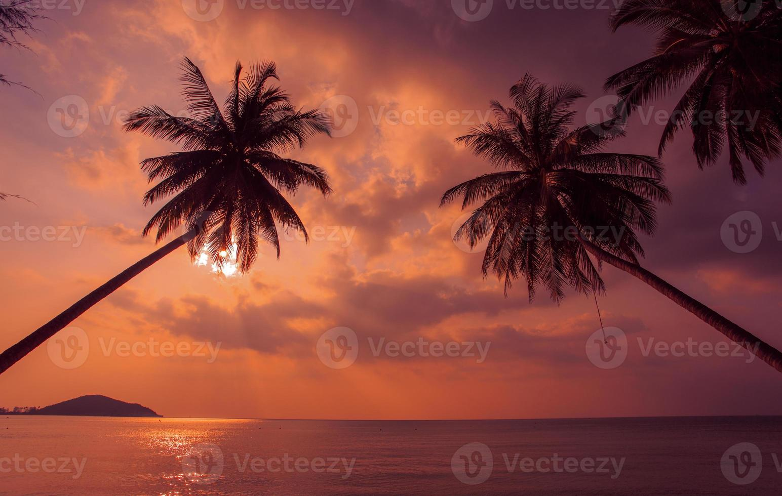 Tropical sunset. Palm trees of the Pacific Ocean. Thailand. photo