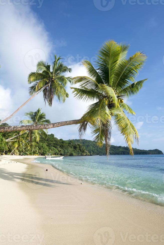 Classic exotic beach photo