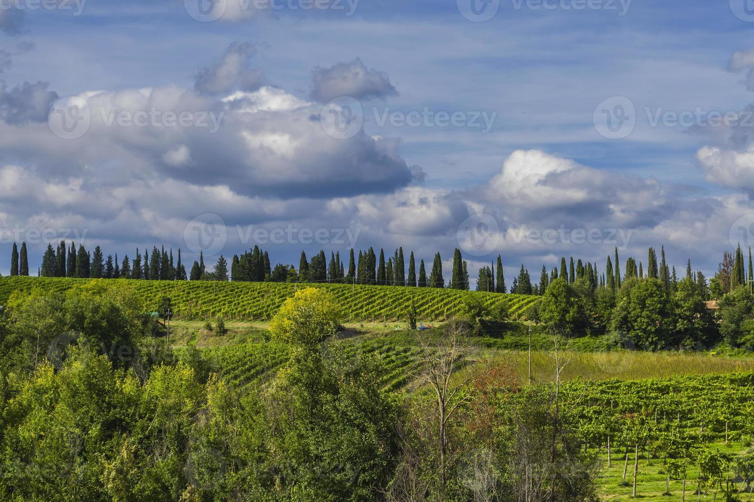 Panorama of the hills in the Chianti region, Tuscany (Italy) photo