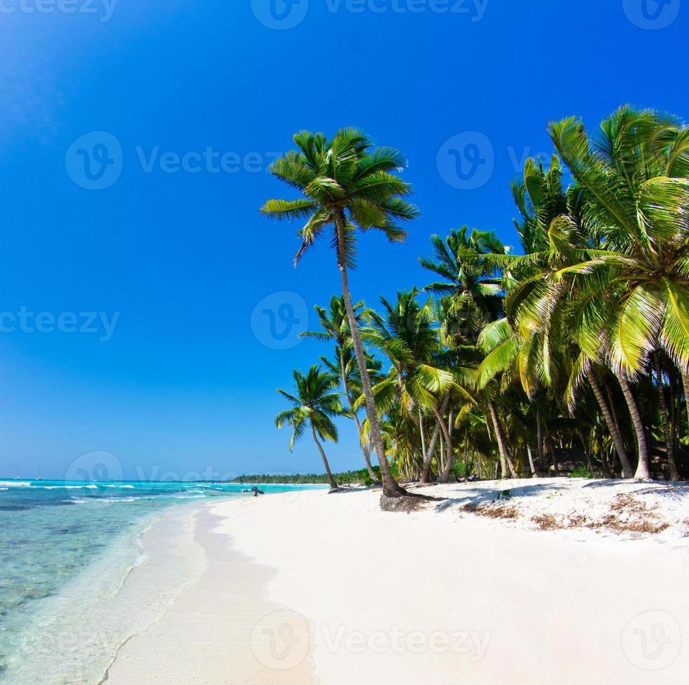 playa caribe foto