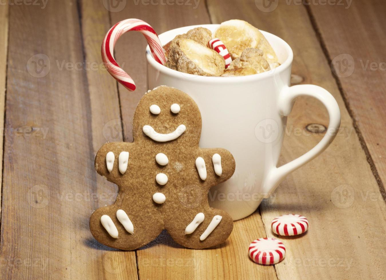 Cup of Hot Chocolate and Gingerbread Cookie photo