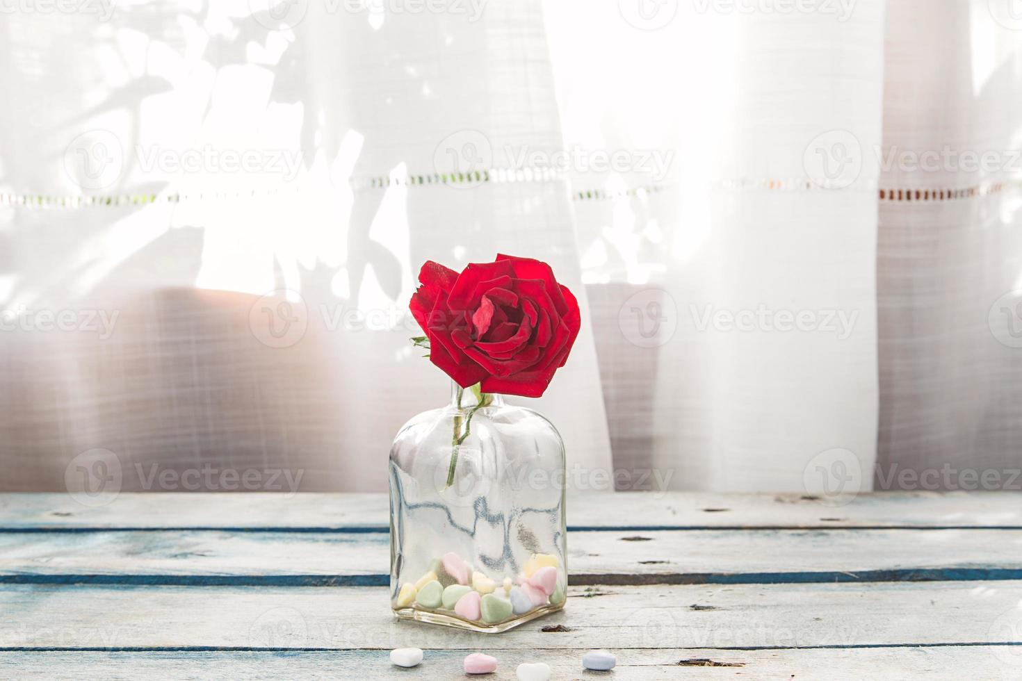 rose and hearts photo