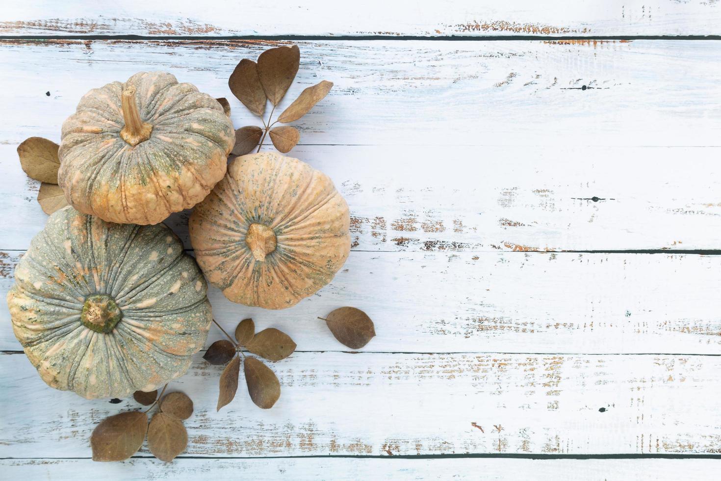 outono e fundo do dia de ação de graças foto