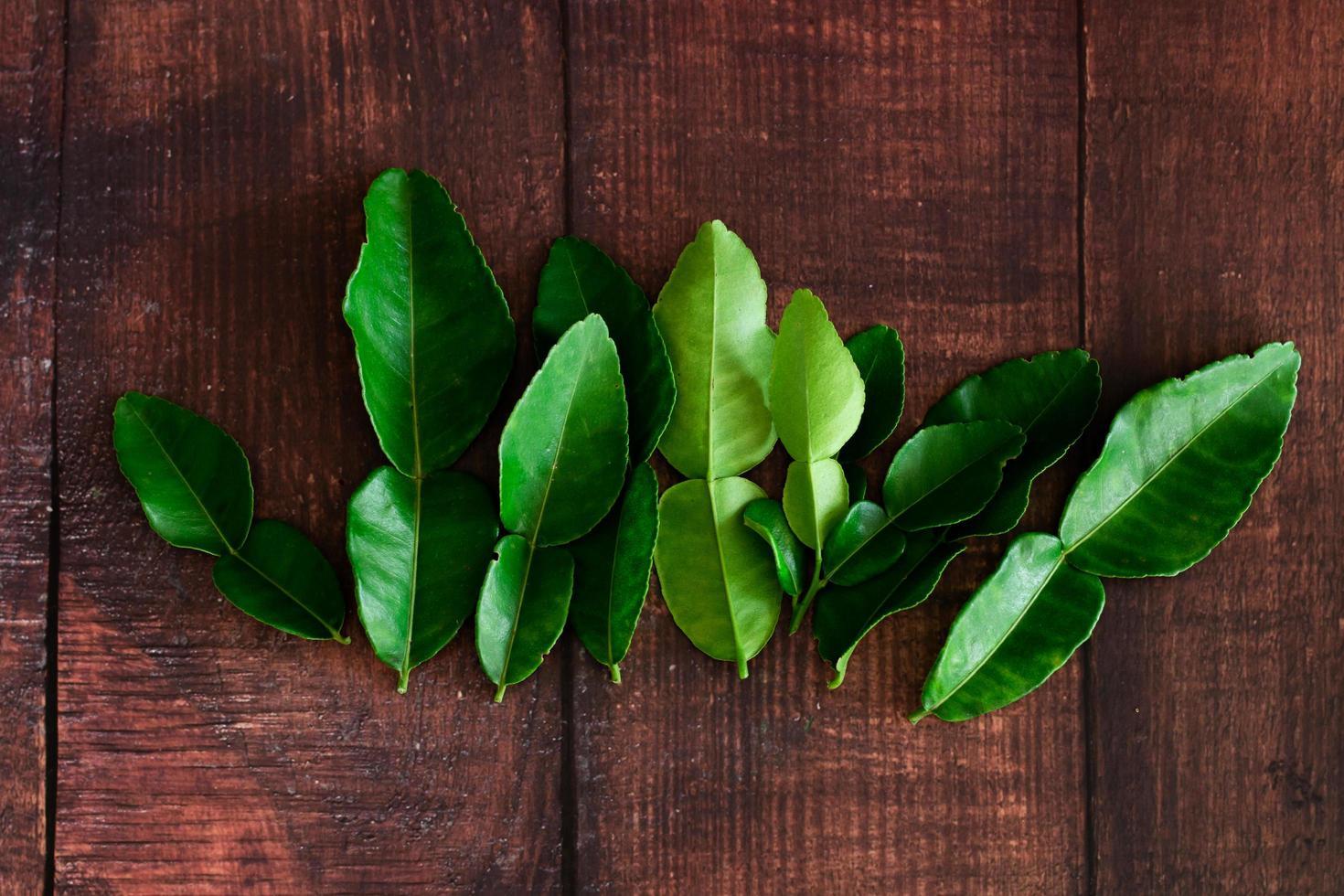 verse groene kaffir limoenblaadjes foto