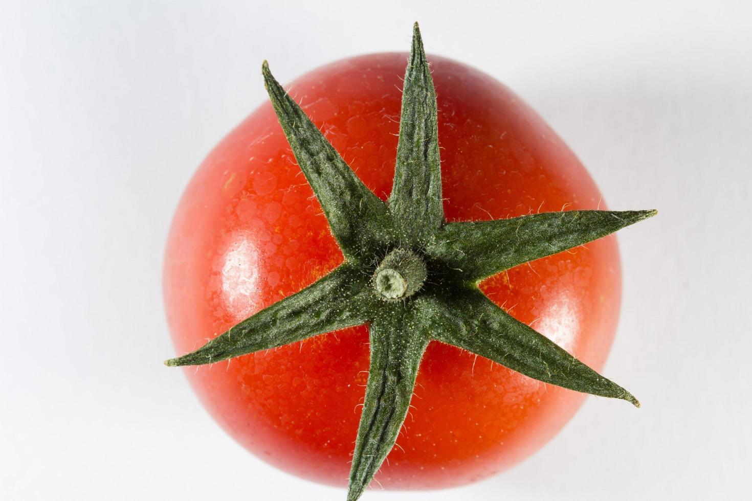 tomate em fundo branco foto