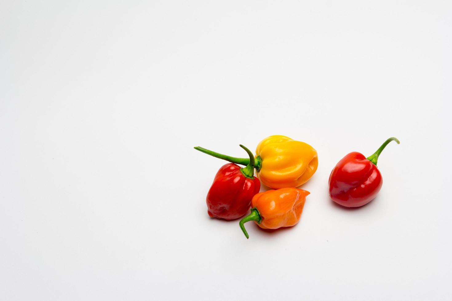 peperoni colorati su sfondo bianco foto