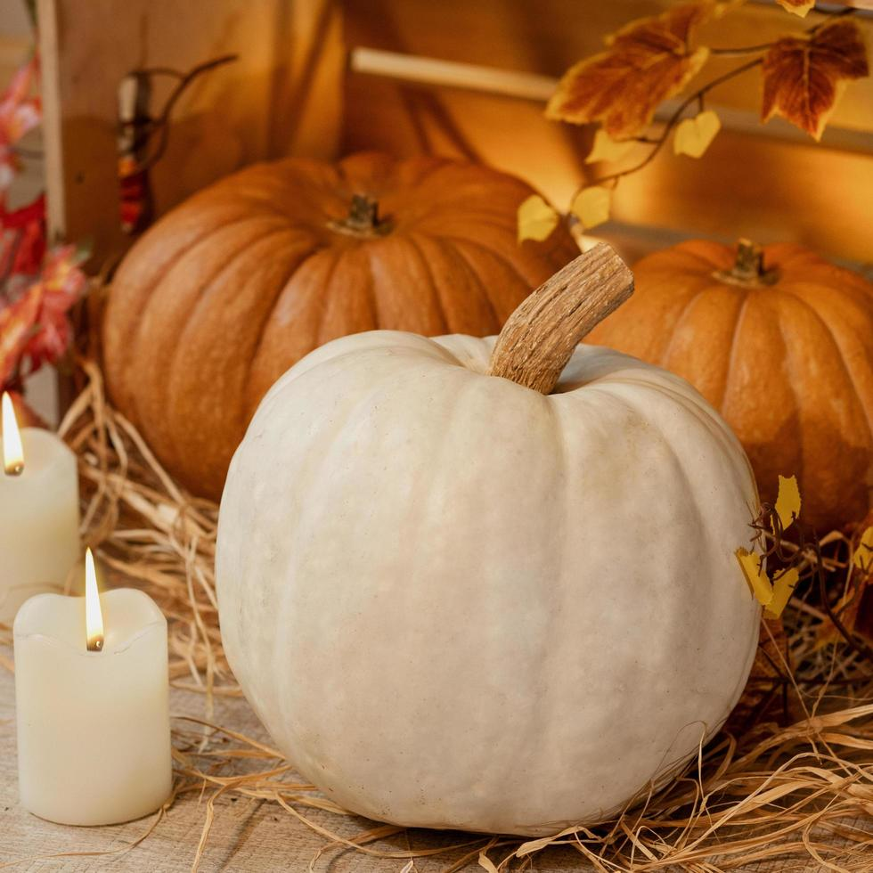 abóboras brancas de halloween foto