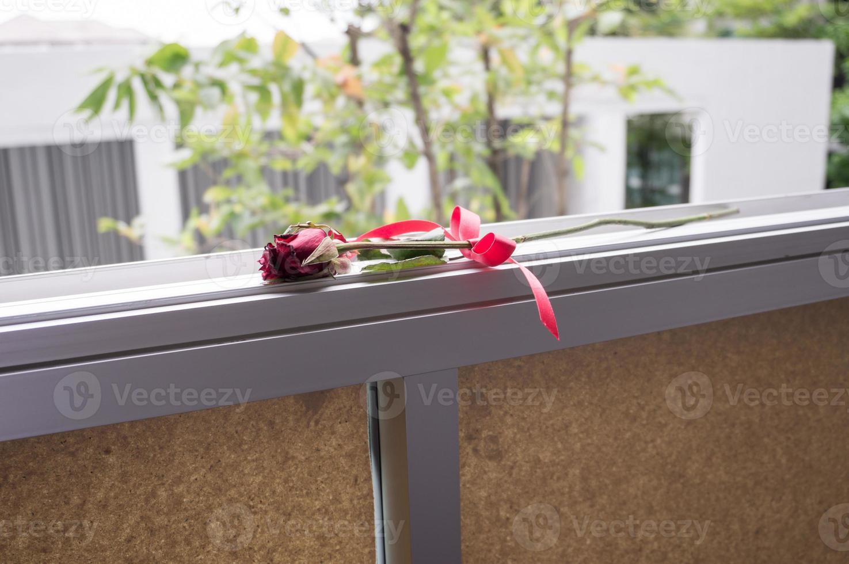 droge rozen op de vensterbank. foto