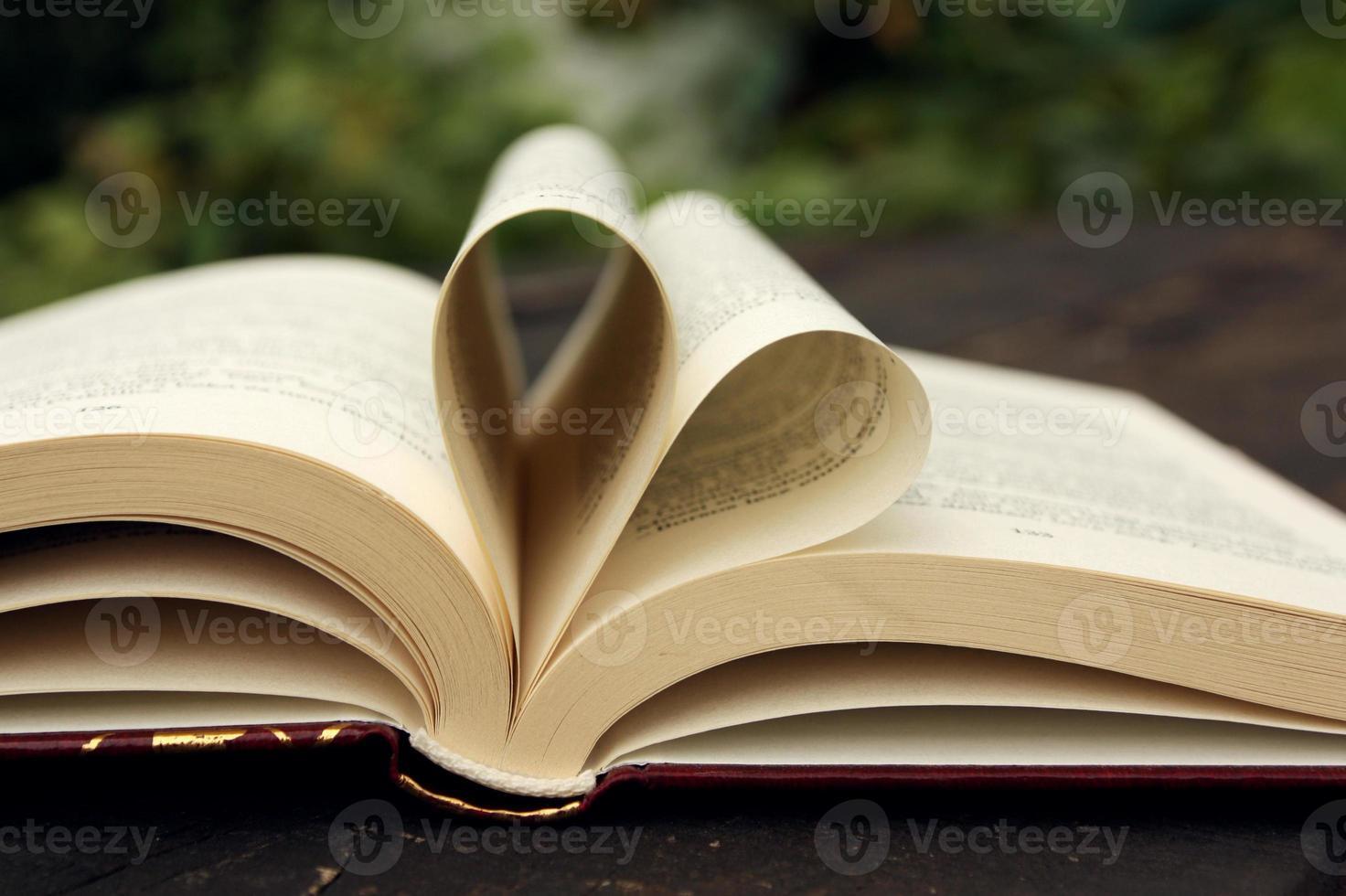 amor en el libro foto