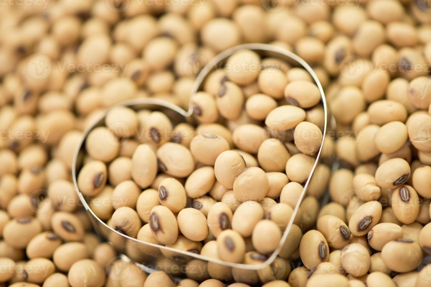 Soy beans in heart box shape photo