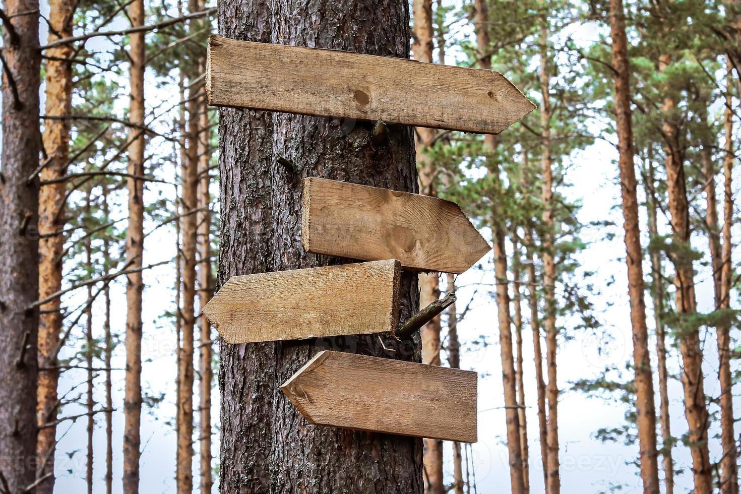 punteros de letrero de madera en blanco foto