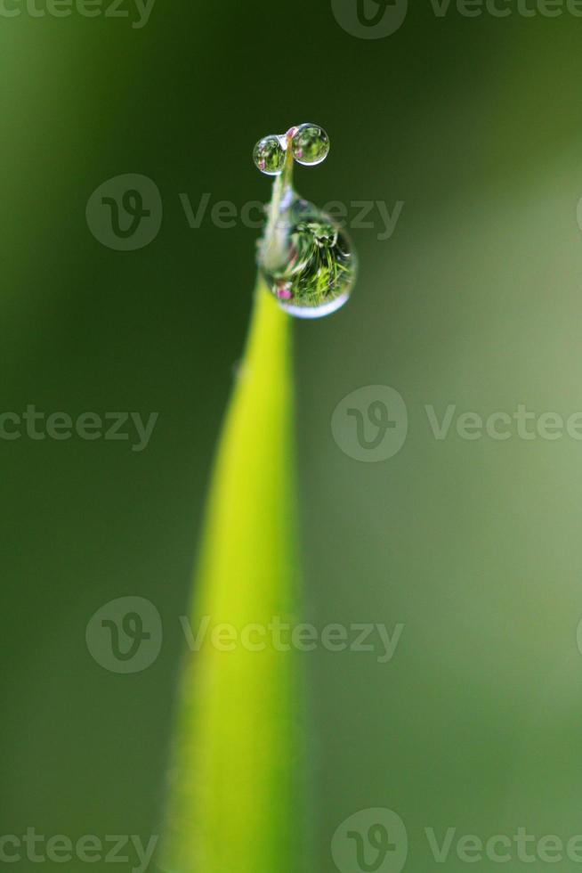 reflejos de gotas de agua foto
